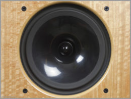 harbeth m40.1 speakers review 08 monitor 40.1 midrange driver radial 2